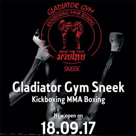 gladiator gym kickbox sneek