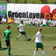 Groenlevencup9